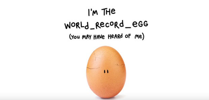 The world record holder of a picture of egg.