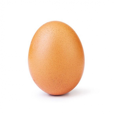 This is a picture of an egg who work broke the world record.