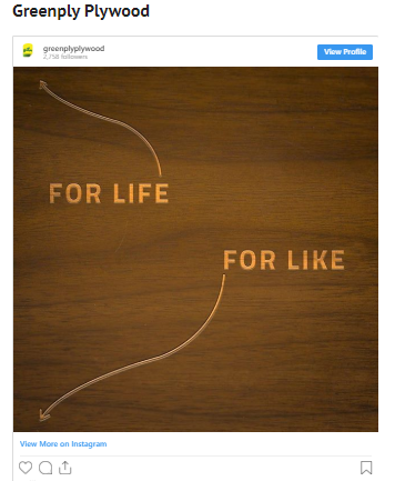 Greenply Plywood Campaign