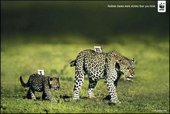 5. World Wildlife Federation