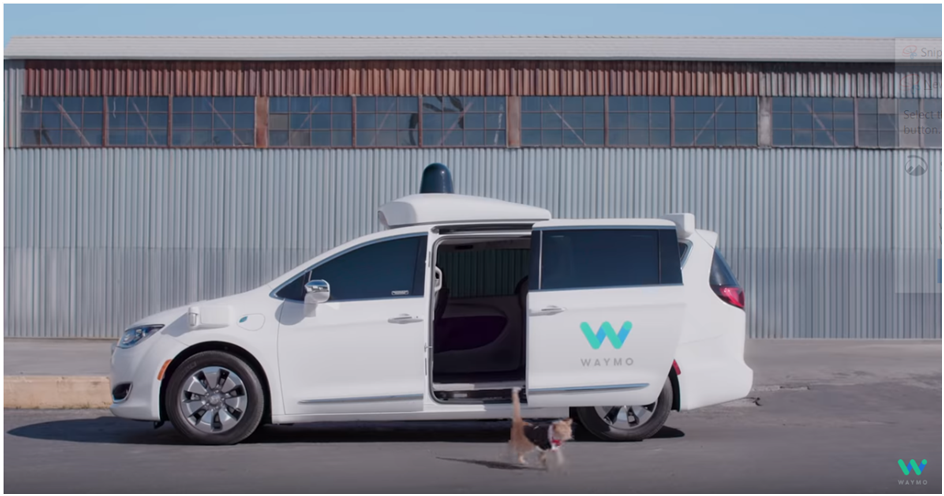 April fools day digital marketing campaigns in 2019 by Waymo Pet