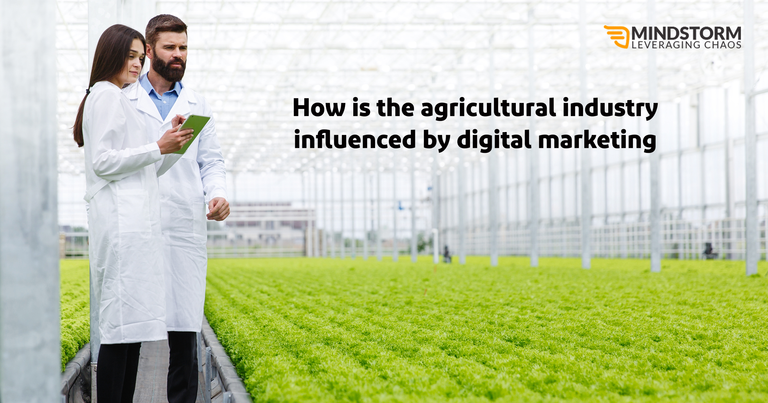 How is the Agriculture Industry influenced by Digital Marketing?